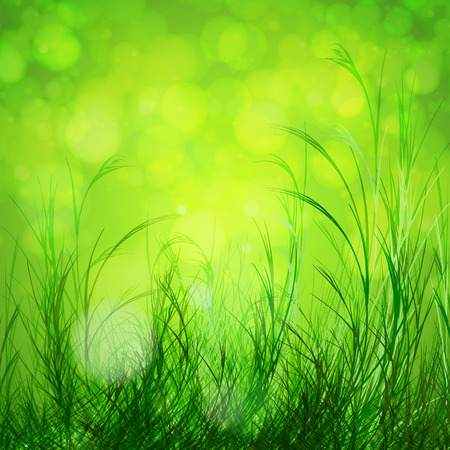 photosynthesis: Spring bokeh background