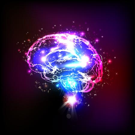 brain illustration: Abstract light human brain, illustration