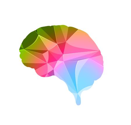 brain polygon concept, easy all editable