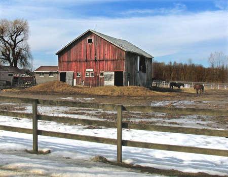 building, farm photo