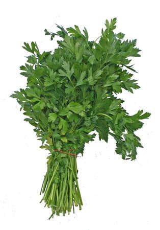 a bundle of green, flat-leaf parsley Stock Photo