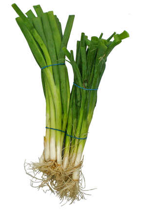 2 bunches of fresh green onions