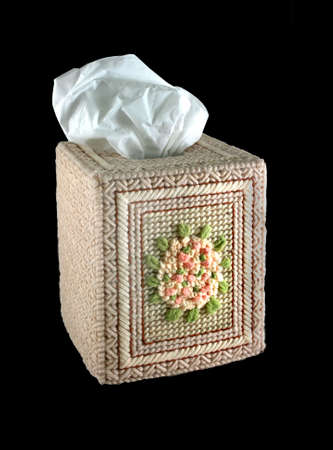 a hand embroidered tissue box on an isolated background photo