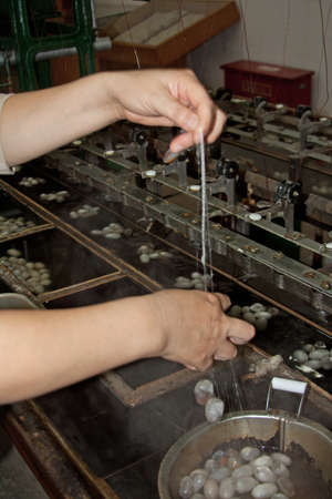 pulling leading silk thread for spinning photo