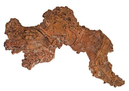 walnut burl: an old oak tree burl