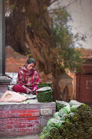 a young woman in Nepal making leaf plates Stock Photo - 23888971