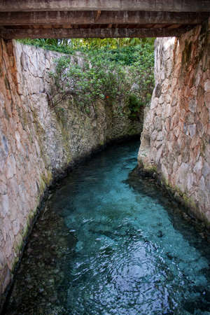 water running out of a cenote into the ocean in Mexico