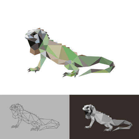 Iguana reptile low poly geometric polygonal design Stock Illustratie
