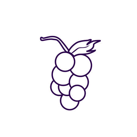 fresh idea: wine fruit icon doodle illustration