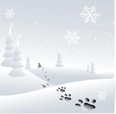 paw print: encantadora pata de impresi�n en la nieve