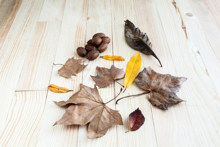 Autumn leaves and fruits on wooden table photo