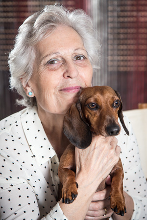 Portrait of a happy senior woman with a beautiful dachshund dog Stock Photo