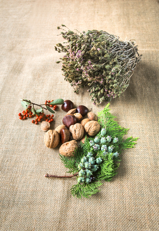 christmas food: Composition of autumn fruits with chestnuts and walnuts