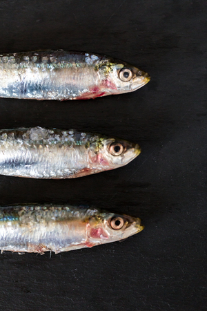 fish eye: Fish eye on black background in close-up