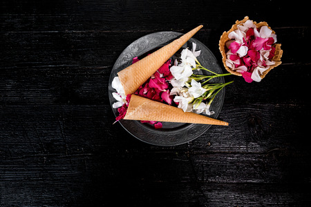 black and white cone: Pink and white petals of flowers in ice cream cone on background of black cardboard