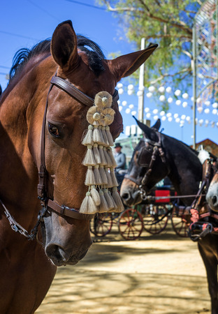 April fair of Utrera in  Seville typical decoration and horses in Andalucia Spanish