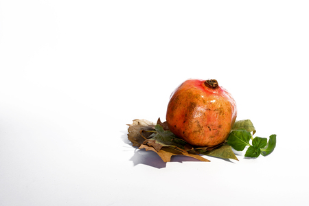 quinces: Fresh quinces and pomegranates isolated
