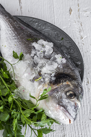 Fresh raw fish on wooden board. Background. From above. Sardines. Octopus. hake; whiting; Golden fish