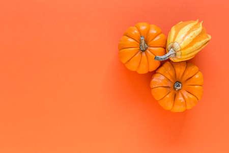 Halloween decoration background on colors backghround. Pumpkins. Flat lay. Copyspace