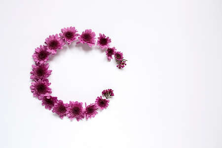 Flowers on white background. Flat lay, top view. Flowers background