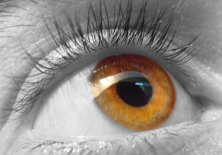 close up eye: Close up occhio pupilla iride