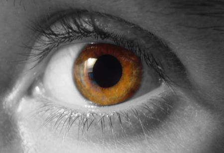 close up eye: vicino agli occhi degli alunni Iris  Archivio Fotografico