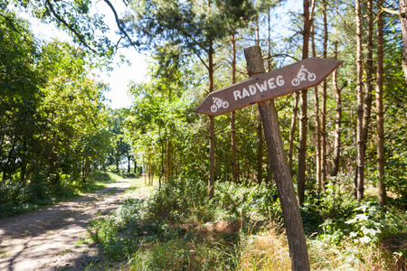 cycleway: german Radweg, cycleway sign in a forest
