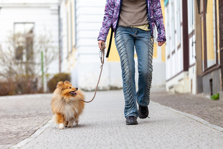 A woman leads her dog on a leash