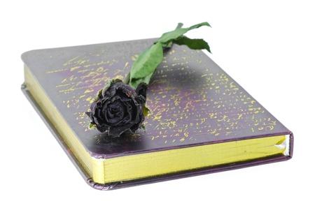 rosas negras: Las rosas muertas de poner en el cuaderno de notas Foto de archivo