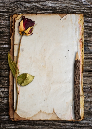 Dead roses and old pencil put on old paper  photo