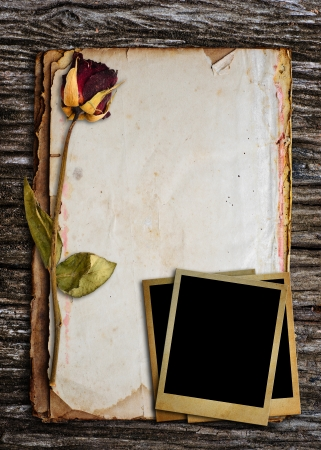 Dead roses and old photo put on old paper  photo
