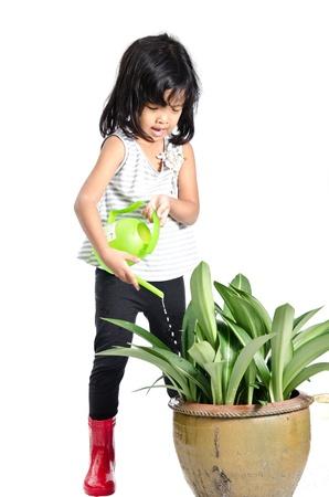 madre soltera: ni�a regando las plantas en el fondo blanco.