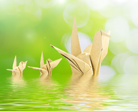 Bird origami reflected in water. photo