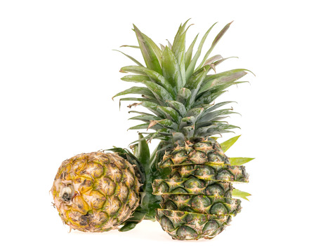 jhy: Pineapple on white background.