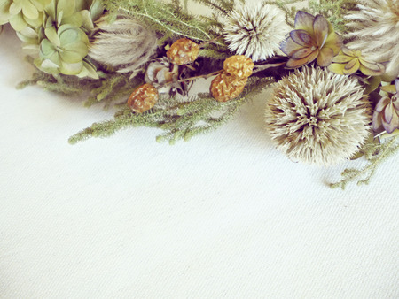 dried flowers: Dried Flowers