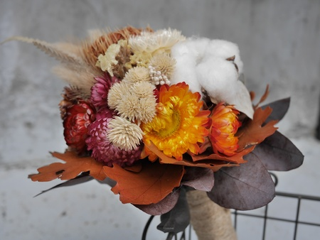 cotton: Dried Flowers
