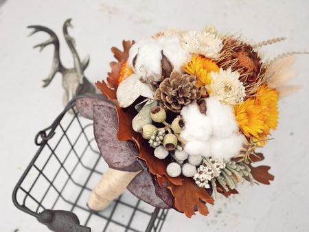 fiori secchi: Dried Flowers