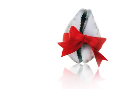 Beautiful white seashell tied with a red ribbon with a bow on a white background. Gift, shopping and holiday concept.