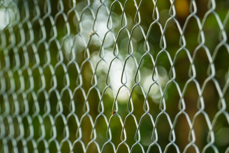 perspective of steel wire mesh fence with nature background photo
