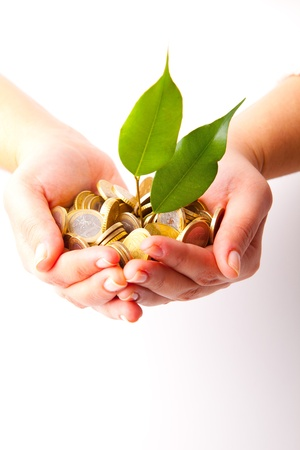 Woman hands full of coins and a little plant