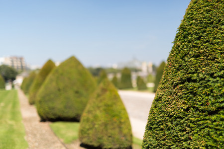 The beautiful gardens of invalides in Paris