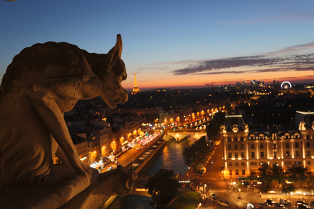 gargouille: The Chimeras of Notre Dame watching the sunset in Paris
