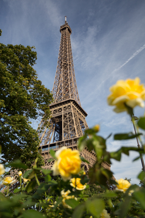 The main attraction of Paris - The Eiffel Tower