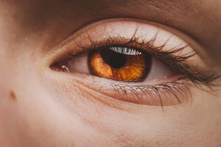 Extreme macro shot of the brown eye of a child