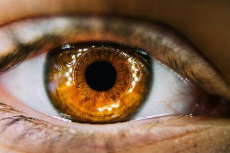 Coup de macro extrême de l'oeil brun d'un enfant Banque d'images