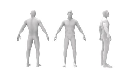 Human body 3d rendering of multiple views of a human body isolated in white background Banco de Imagens