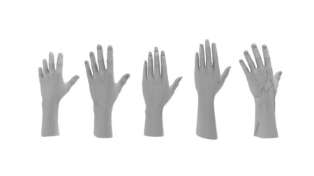 3d rendering of multiple computer modeld human hands isolated in white studio background