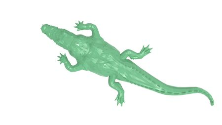 3D rendering of an alligator isolated on white background