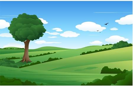 Nature landscape illustration Stock Vector - 8482772