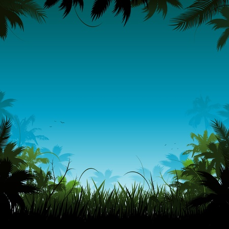 dschungel: Jungle hintergrund illustration Illustration